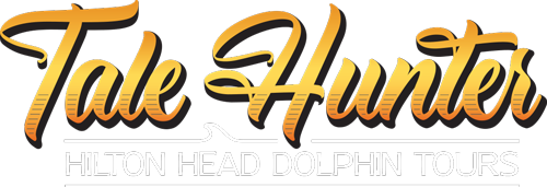 Dolphin Tours Sunset Cruises Hilton Head Island